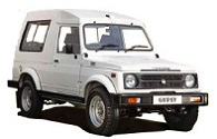 Maruti Gypsy 1000 Petrol Car Battery